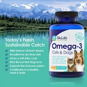 100-Pure-Omega-3-for-Dogs-and-Cats-Wild-Alaskan-Salmon-Oil-All-Natural-Fish-Oil-Supplements-for-Pets-For-Healthy-Skin-and-Shiny-Coat-No-Fishy-Smells-500mg-120-Easy-to-Swallow-Capsules-0-1