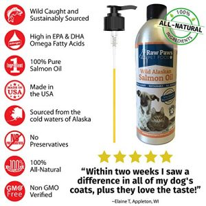 Raw-Paws-Pet-Wild-Caught-Alaskan-Salmon-Oil-for-Dogs-Cats-16-oz-Aluminum-Bottle-with-Pump-Daily-Supplement-for-Dogs-Cats-No-Preservatives-No-Additives-Made-in-USA-0