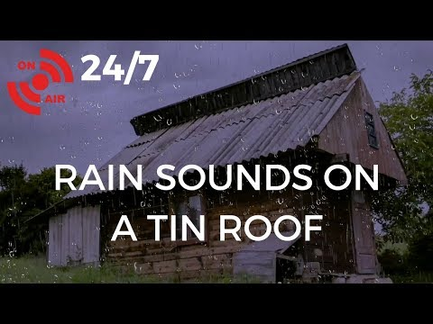 🔴 Rain Sounds on a Tin Roof for Sleeping, Relaxing, Insomnia, Soothing a Baby or Study | 24/7 🌧️