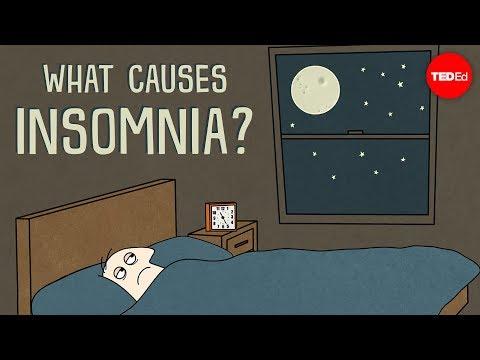 What causes insomnia? – Dan Kwartler