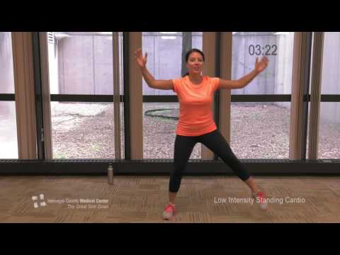 The Great Slim Down Weight Loss Pogram- Low-Intensity Standing Cardio Work Out
