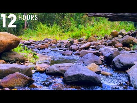 Gentle Stream Sounds | Relaxing Stream Sounds use for Relaxation, Sleep, insomnia