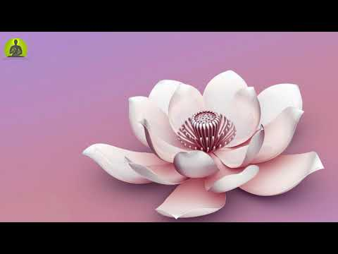 Meditation Music for Anxiety & Panic Attacks: Depression & Stress Healing Music, Relax Mind Body