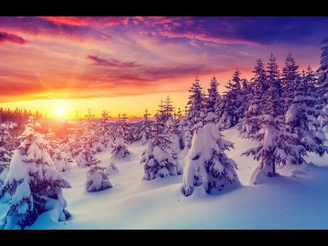 Sleep Music, Calm Music for Sleeping, Delta Waves, Insomnia, Relaxing Music, 8 Hour Sleep, ☯2739