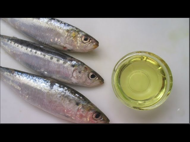 How to make Fish Oil at home