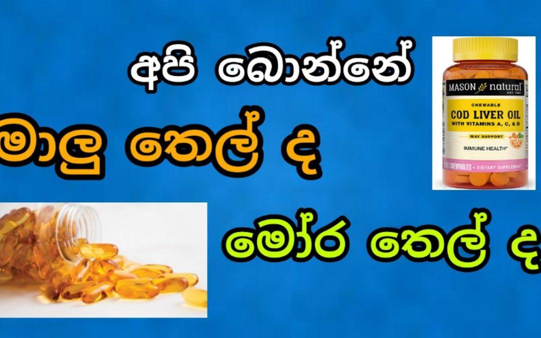 අපි බොන්නේ මාලු තෙල් ද? මෝර තෙල්ද? Cod liver oil and fish oil – Slnotes