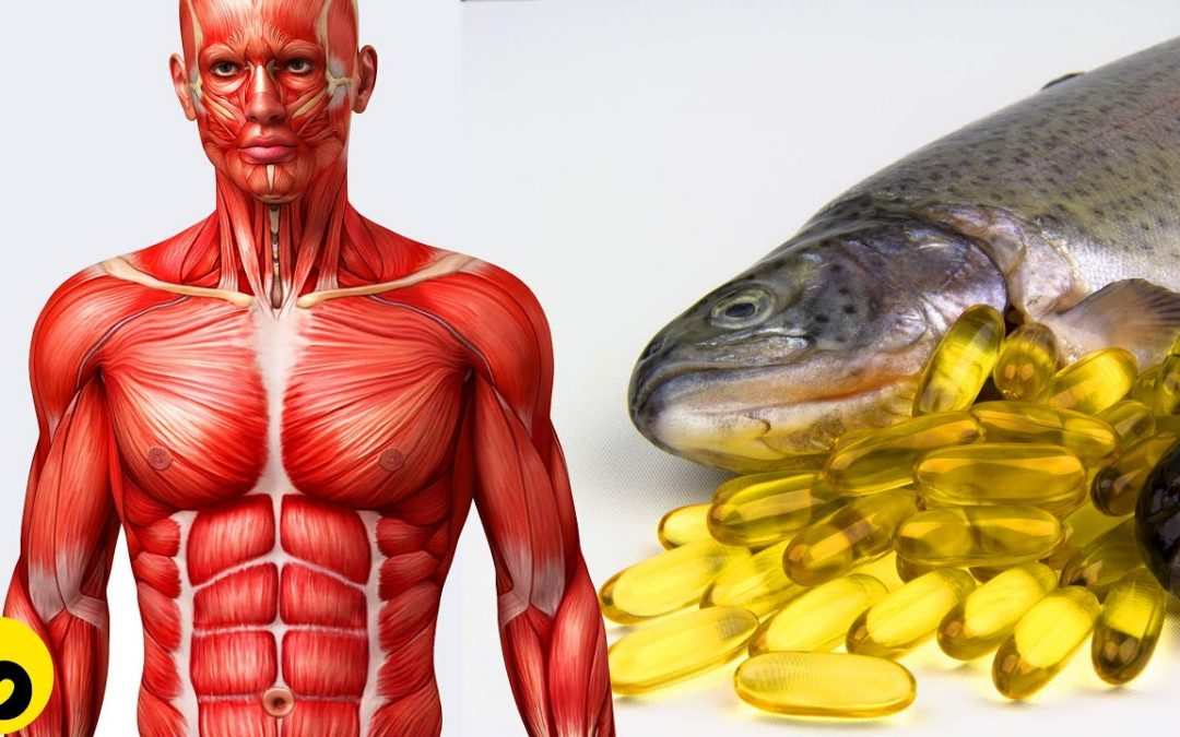 7 Healthy Benefits Of Fish Oil