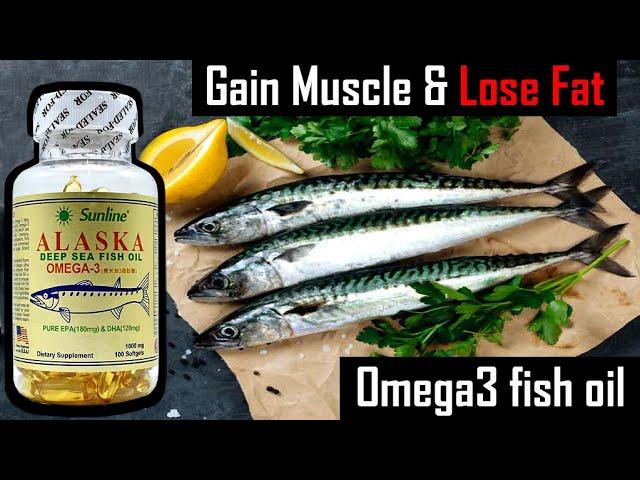 Alaska fish oil Omega 3 fatty acids | Gain Muscle & Lose fat at the same time | Protein Guru |