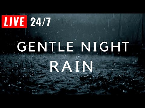 🔴 GENTLE NIGHT RAIN to Sleep Immediately, 24/7 ~ Insomnia, Relaxing, Study, Rain Sound, Gentle Rain